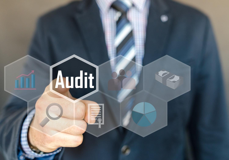 Novos Paradigmas da Auditoria no Setor Público - GRATUITO