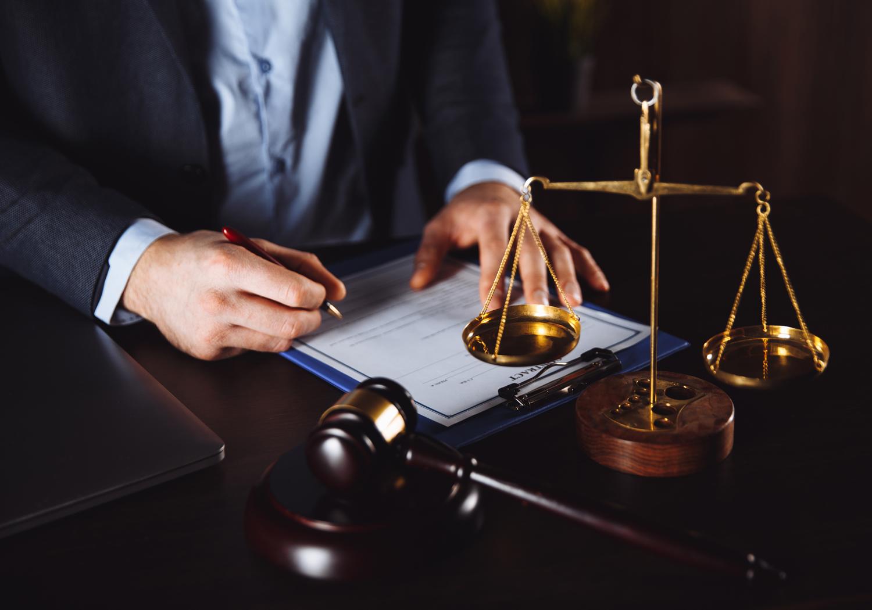 Impactos da Nova Lei de Licitações e Contratos Administrativos - GRATUITO
