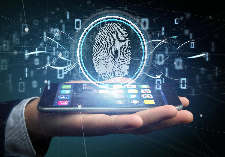 Desafios da Segurança Cibernética no Setor Público